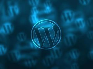 WordPress Loginizer Plugin